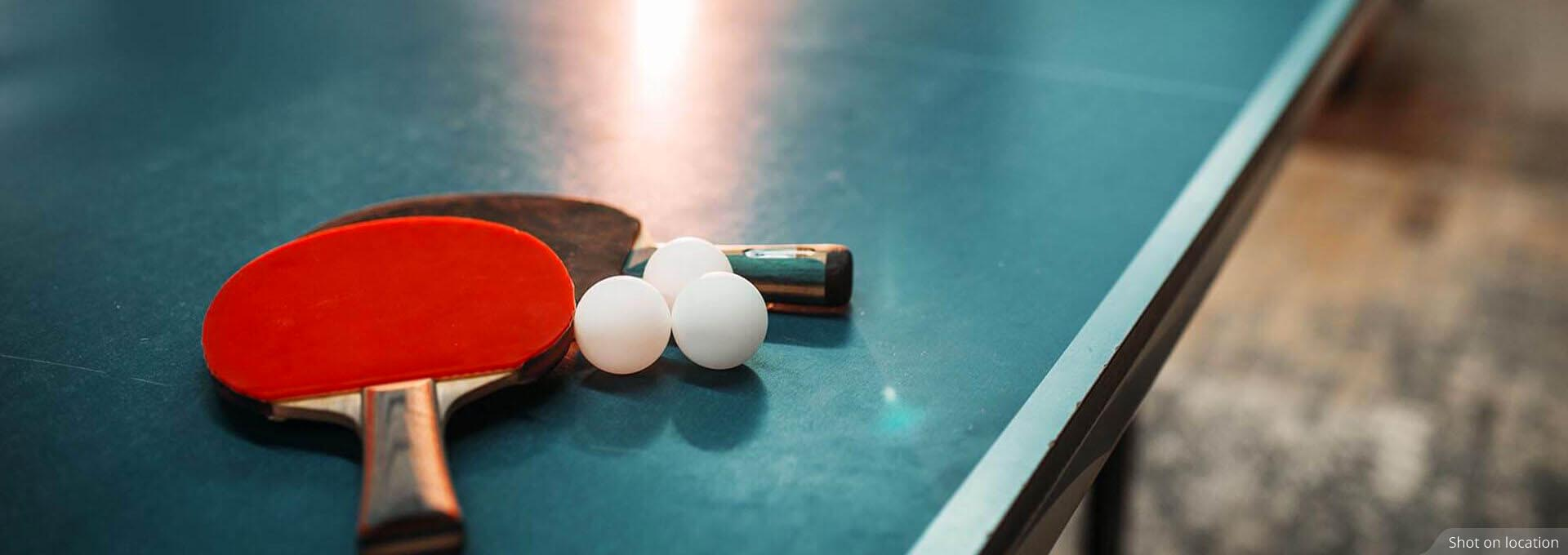 Table tennis court in Calgary by House of Hiranandani in Devanahalli, Bengaluru