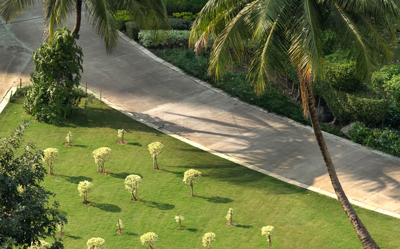 Afforestation and Horticulture3