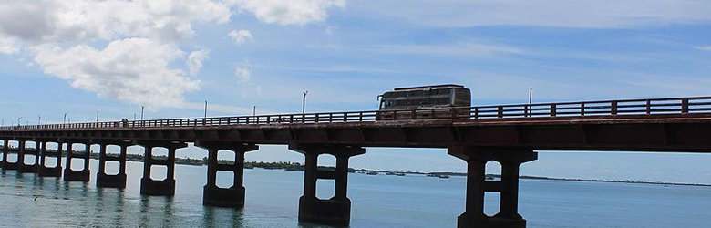 Six bridges connecting the East Coast Road and the Rajiv Gandhi Salai will soon be designed according to the alignment of the proposed National Waterway 4, to ease congestion in the southern parts of the city.