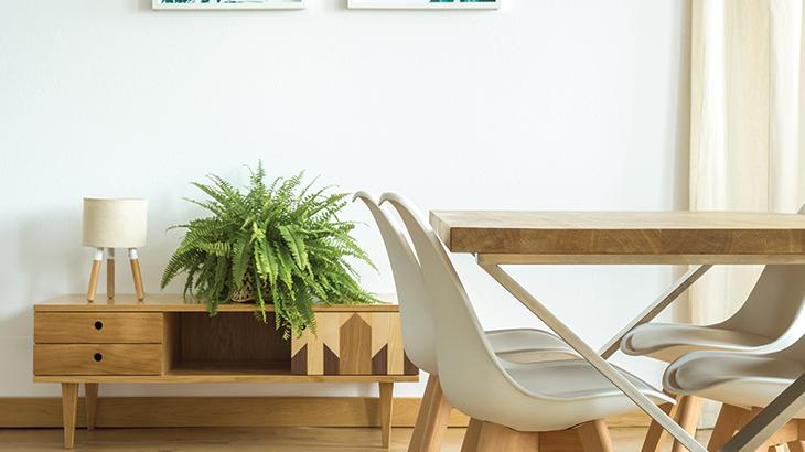 Organic furnishings